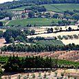 Toscana-2009-90