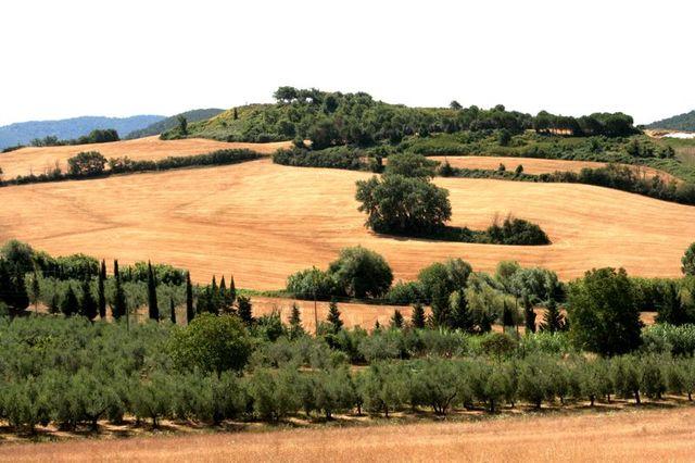 Toscana-2009-80