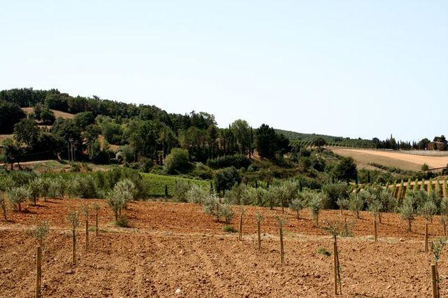 Toscana-2009-83