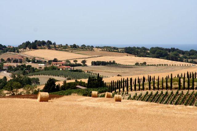 Toscana-2009-86