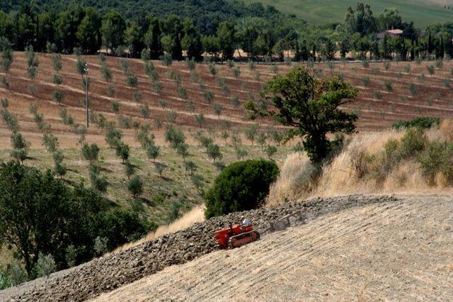 Toscana-2009-87