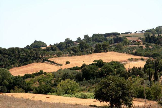 Toscana-2009-89